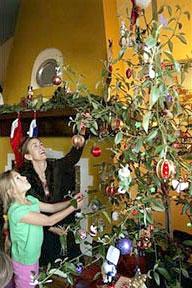 rented_tree